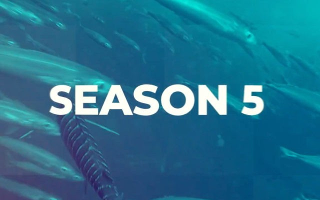 Season 5 text in middle of screen over underwater image of fish